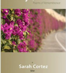 Goodbye Mexico Book Cover
